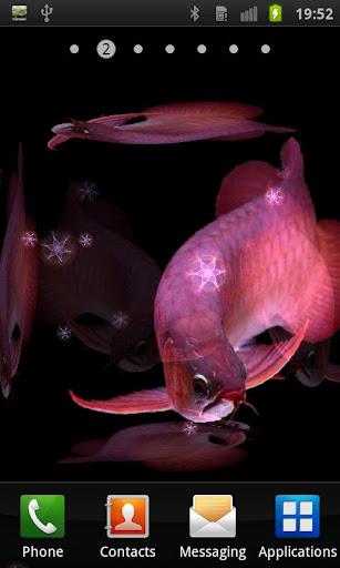 Aquarium Arowana LWP ★