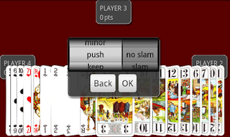 Screenshot of Andy Tarot Lite