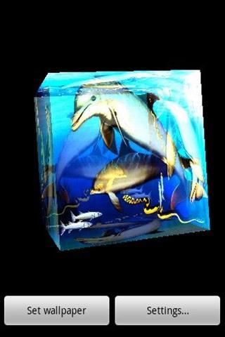 3D Dolphin 3