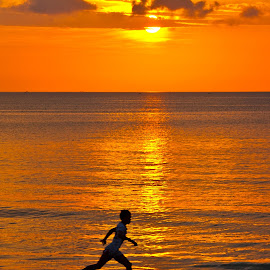 Last run of the day by Mike O'Connor - Landscapes Sunsets & Sunrises ( excercise, fitness, sunset, shoreline, ocean, running )