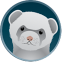 Ferret Card icon