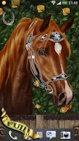 Screenshot of Arabian Horse Free Wallpaper
