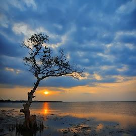 kalibuntu by Jhon Welly - Landscapes Sunsets & Sunrises (  )