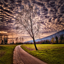 Marsure street by Luigi Esposito - Landscapes Cloud Formations ( clouds, mountains, tree, street )