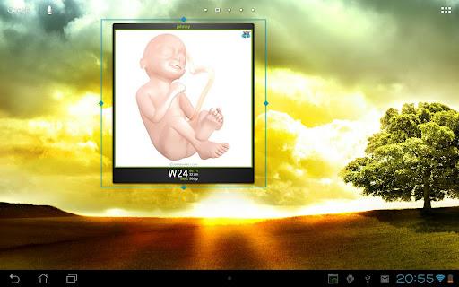 免費下載生活APP|妊娠した!ウィジェット app開箱文|APP開箱王