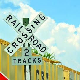 by Theresa Betancourt - Transportation Trains