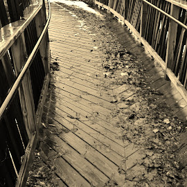 Soar. by Jeff Evans - Novices Only Objects & Still Life ( sepia, overlook, wooden, rebuilt, walkway, rain )