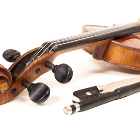Violon-2 by David Monjou - Artistic Objects Musical Instruments