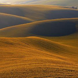 Fields in Czech Tuscany by Alexandr Kolovratnik - Landscapes Prairies, Meadows & Fields ( autumn, meadow, czech, sunrise, hovorany, fields )