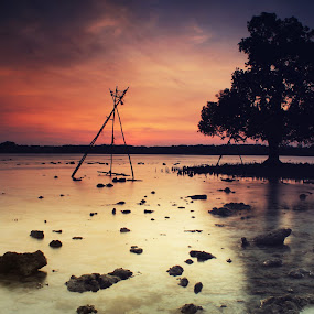 Silent In The Morning by Roem Hasadi - Landscapes Waterscapes ( tree, waterscape, long exposure, ss, beach, sunrise )