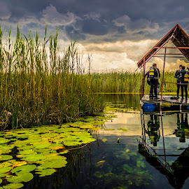 Divers Abroad by Hilton Viney - Landscapes Waterscapes ( water, clouds, canon, reflection, waterscape, beautiful, 600d, storm, magestic, tranquil, waterlily, eos, nature, divers, diving )