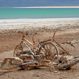 A-Salted... by Rich Goebel - Transportation Bicycles ( love, bicycles, concept, seasonal, nature, dead sea, art, transportation, middle-east, coast )