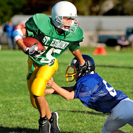 Elusive by Tom Vogt - Sports & Fitness American and Canadian football ( football, youth,  )
