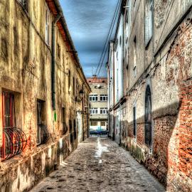 Street by Dan Flimanu - City,  Street & Park  Street Scenes (  )