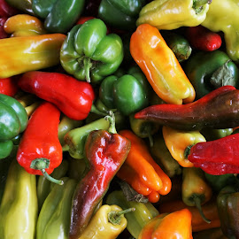 Colorful Peppers by Victor Mirontschuk - Nature Up Close Gardens & Produce ( peppers, nature, colors, food, nyc )