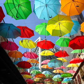 by Choon Ghee Ooi - City,  Street & Park  Street Scenes ( colors, umbrella )