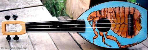 Nouvelle bizarrerie sur la baie Flea-flea