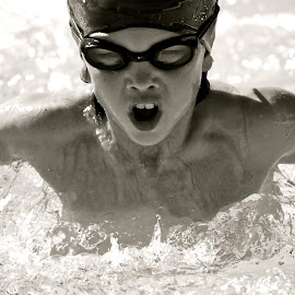 by Gina Galipo Bluthardt - Sports & Fitness Swimming (  )