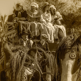horse drawn carriage, by Vibeke Friis - City,  Street & Park  Street Scenes ( passengers, costumes, old, horses, carriage )