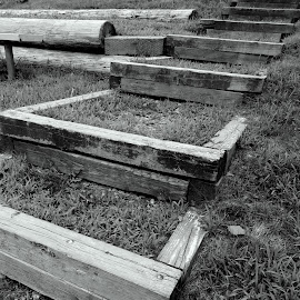 Park Steps by Lori Rider - City,  Street & Park  City Parks ( angles, park, wood, grass, square,  )