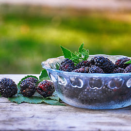 Blackberry by Maja  Marjanovic - Food & Drink Fruits & Vegetables ( blackberry, fruit, nature, foliage, gardens )