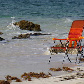 The Beach by Bridgette Rodriguez - Artistic Objects Furniture ( water, tranquil, chair, beaches, relax, chairs, ocean, tranquility, beach, relaxing )