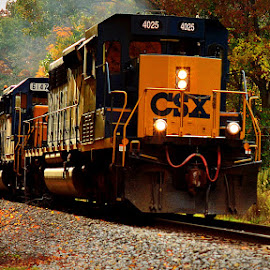 Train by Kourtney Monroe - Transportation Trains ( fall, color, colorful, nature )