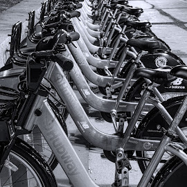 HubWay by Jim Bosch - Transportation Bicycles ( b&w, bikes, city dwellers, wheels, rent, transportation )