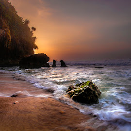 Jumping by Mulyadi AM - Landscapes Beaches ( orange, coral, waves, beach, sunrise )