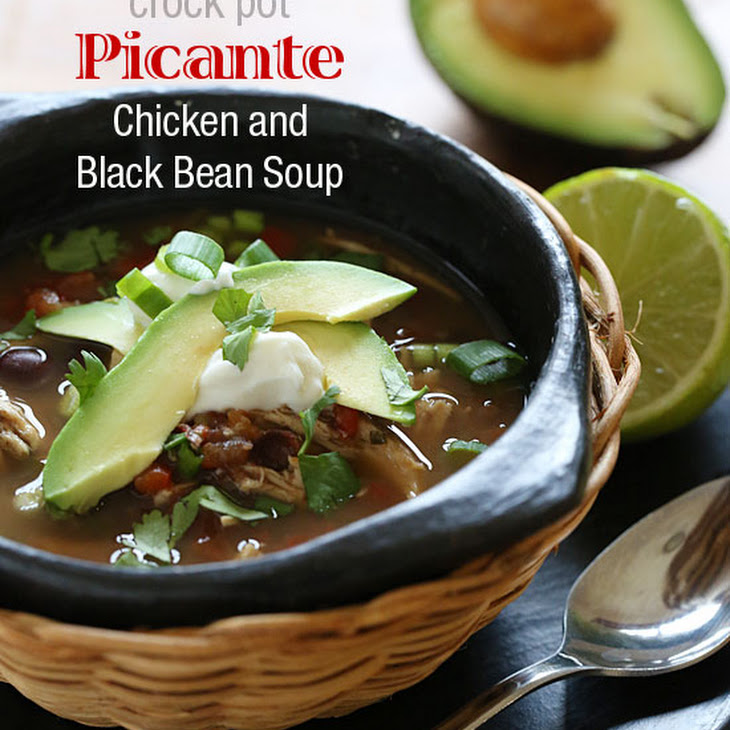 Crock Pot Picante Chicken and Black Bean Soup Recipe | Yummly