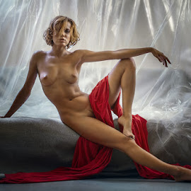 Chucha  by Dmitry Laudin - Nudes & Boudoir Artistic Nude ( studio, nude, fabric sofa, woman )
