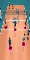 Screenshot of Volleyball Game