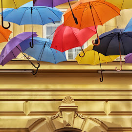 Umbrella by Ivana  Todorovic - Artistic Objects Other Objects ( red, purple, blue, color, umbrella, yellow, black )