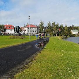 Reykjavík Iceland by Ólafur Ingi Ólafsson - City,  Street & Park  Neighborhoods ( water, reflection, heaven, grass, house, byrd, people, reykjavík, iceland, sky, tree, cloud, byrds )
