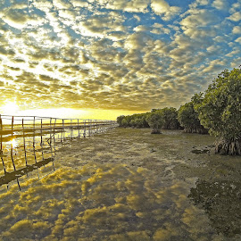 Bani, Pangasinan, Philippines  by Joy Jose Casusi - Landscapes Cloud Formations ( clouds, reflection, sunrise, philippines, mangrove )
