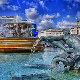 by Jose Figueiredo - City,  Street & Park  Fountains ( london, fountains, square, city )