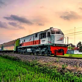 Indonesian Train (4) by Randi Pratama M - Transportation Trains ( indonesian, train,  )