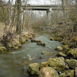 Over The River & Through The Woods. by Roy Walter - Nature Up Close Trees & Bushes ( water, stream, nature up close, rocks, woods )