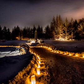 Luminaria Night by Joseph Law - News & Events World Events ( alberta, devon, thousand, luminaria night, memory, paths, bushes, love one, candles, trees, light up, garden, devonian )