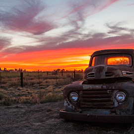 Old Truck at Sunset by NIcole Fetter - Transportation Automobiles ( #truck, #ford, #automobile, #fifties, #70d, #orange, #country, #transportation, #sunset, #f-100, #1950's, #canon, #abandoned, land, device, transportation,  )