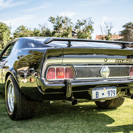 by Allyn Cooper - Transportation Automobiles ( perth, ford mustang, cars, western australia )