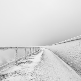 Frosty by Ricardo  Guimaraes - Landscapes Weather ( wind, mountain, winter, cold, fog, snow, white, weather, portugal, landscape, walk, wall,  )