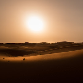Desert by Walid Ahmad - Landscapes Deserts ( amazing, photos, desert, sunset, like, landscape, photography, follow )