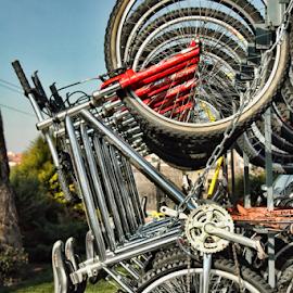 by Antonio Amen - Transportation Bicycles