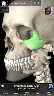 App Essential Skeleton 3 APK for Windows Phone