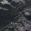 giant freshwater prawn??