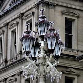 Icy Lamps by Matthew Winn - Buildings & Architecture Public & Historical ( lamps, state capitol, ice storm, winter, ice, lansing )