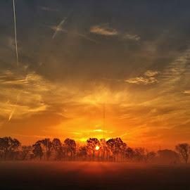 Foggy sunrise by Zeralda La Grange - Instagram & Mobile iPhone ( #clouds, #nature, #sun, #sky, #iphone, #sunrise )