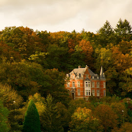 La Roche-en-Ardenne by Ева Йорданова - Landscapes Travel ( autumn colored leaves,  )