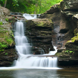 Summer Starts with Murray Retnolds by Gene Walls - Landscapes Forests ( water, spillway, waterfall, moss, pennsylvania, ferns, ricketts glen, fornation, monolith, falls, state park, pillar, force, rocks )